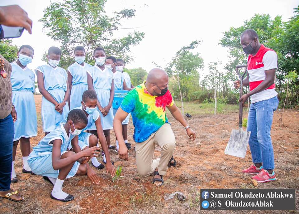 Green Ghana Day: Ablakwa joins Aveyime Girls' JHS to plant trees